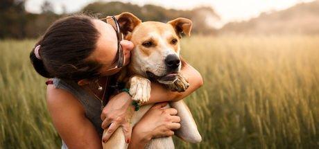 """""""Kadınlar köpekleri erkeklerden daha iyi anlıyor"""""""