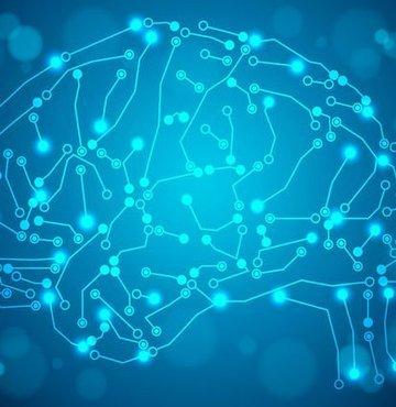 Son veriler, zeki insanları ayıran özelliklerin yüzde 40'ının sonradan kazanıldığına işaret ediyor. Birtakım alışkanlıklar kazanarak daha zeki olmak mümkün.