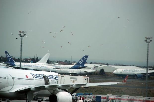 Atatürk Havalimanı