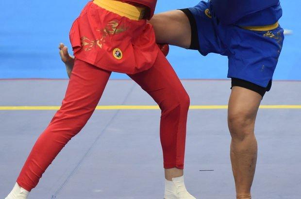 Türkiye Wushu Federasyonu