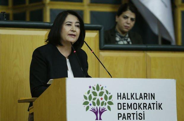 Eski HDP Eş Genel Başkanı Serpil Kemalbay gözaltında