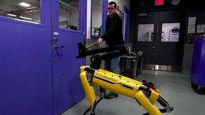 Bu da oldu! Robot insana karşı...