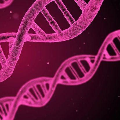 Kanser tedavisinde DNA nanorobotları