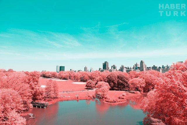 Kızılötesi fotoğrafçılık ikinci baharını yaşıyor