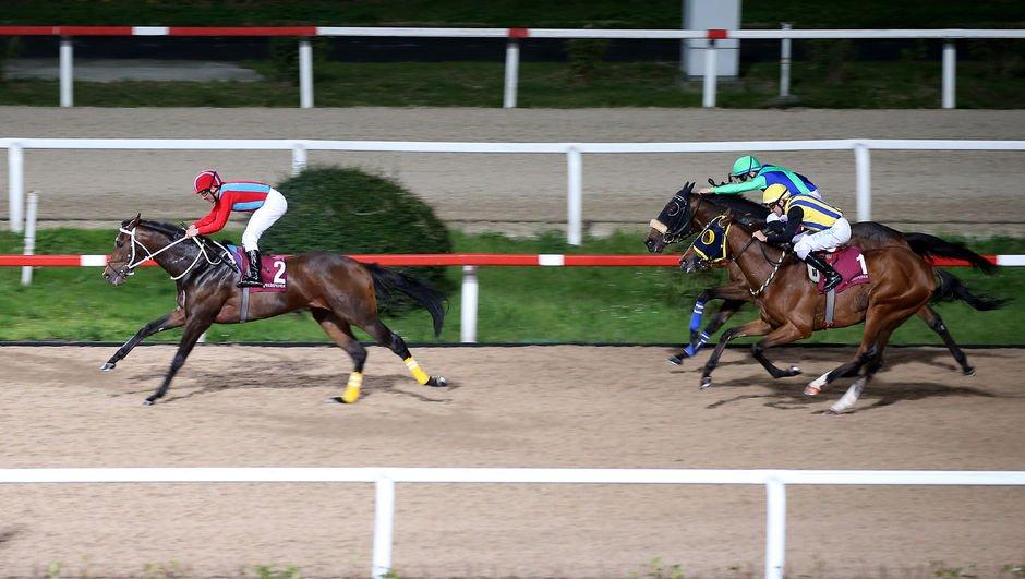 Atlar, 8 Mart için koştu