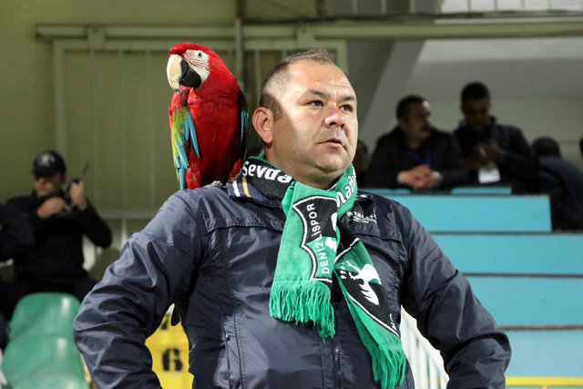 """Papağan """"Sultan"""" ile sahibinin dostluğu"""