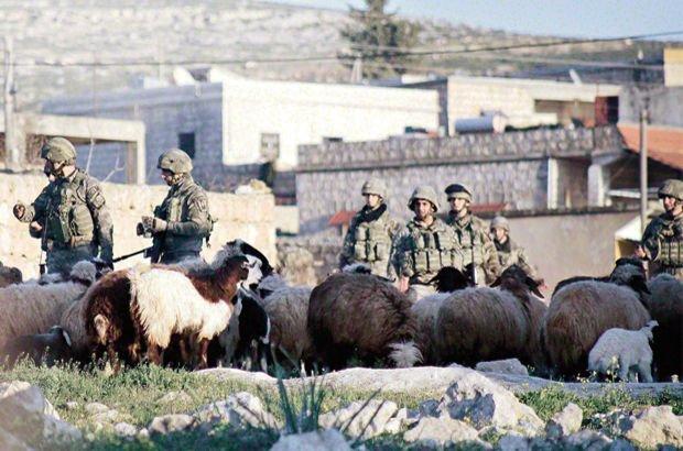 TSK ÖSO Afrin Zeytin Dalı Harekâtı