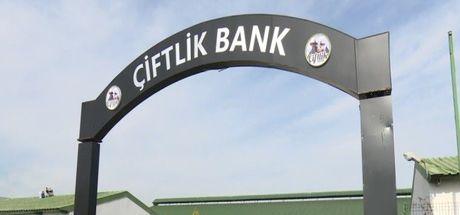 Çiftlik Bank Son Dakika! Çiftlik Bank soruşturmasında iade ve kırmızı bülten...