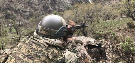 Bitlis'te terör örgütüne yönelik operasyon
