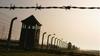 Auschwitz kampındaki anıta işeyen İsrailli'ye para cezası