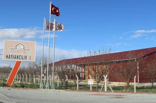 Çiftlik Bank sonrasında şimdi de Konya'da 'sütbank' soruşturması başlatıldı!