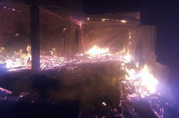 Mandırada yangın çıktı, 40 hayvan telef oldu