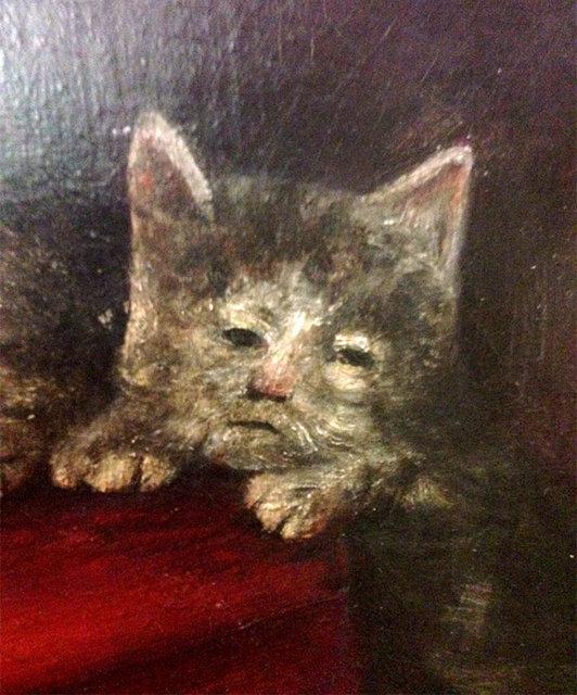 Yeni trend Ortaçağ kedileri!