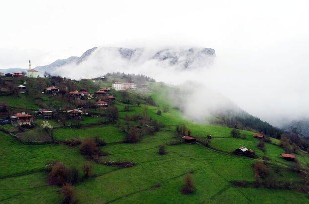 Doğanın yeşile doyduğu yer: Küre Dağları