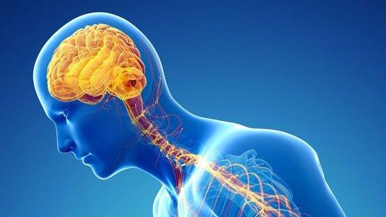7 milyon kişi Parkinson'la mücadele ediyor