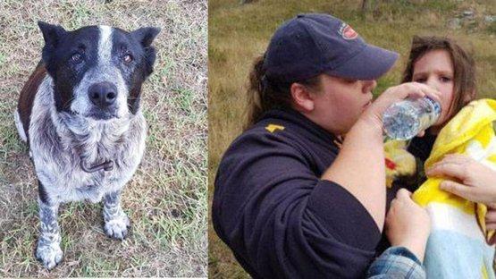 Kayıp küçük kız engelli köpeği sayesinde bulundu