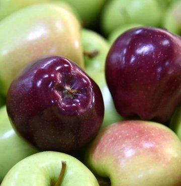 İkram elmaya gümrük cezası