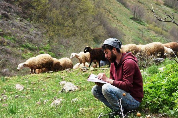KPSS'ye merada hazırlanıyor! Bir yandan çalışıp diğer yandan çobanlık yapıyor