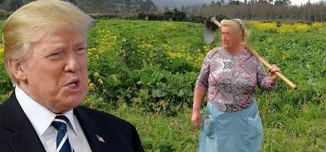 'Donald Trump'ın çiftçi kız kardeşi' sosyal medyada gündem oldu