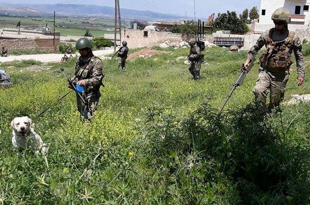 Afrin'de çok sayıda mühimmat ele geçirildi