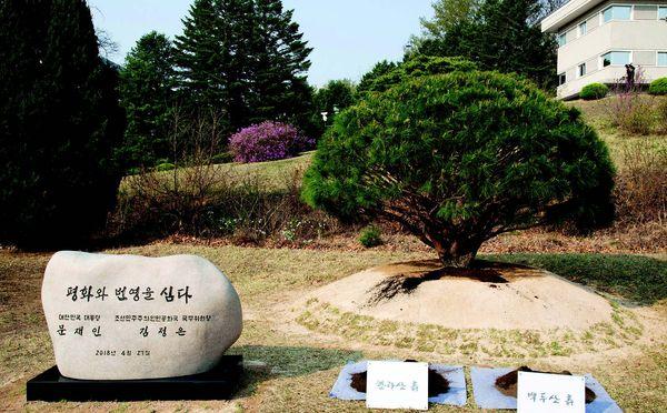 Sınırsız barış! İki Kore, bir olma kararı aldı