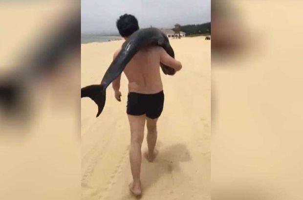 Çinli turist yunusu sırtına yükleyip evine götürdü!