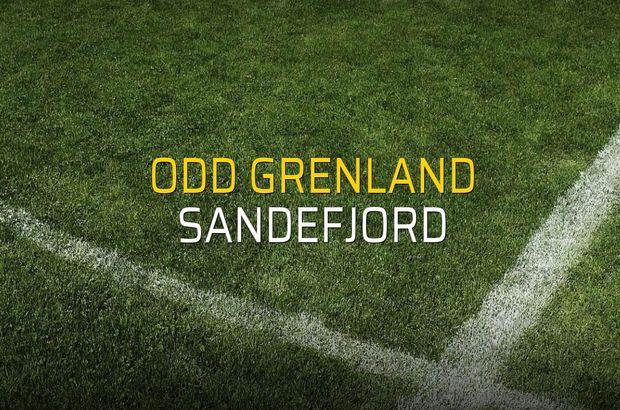 Odd Grenland - Sandefjord maçı istatistikleri