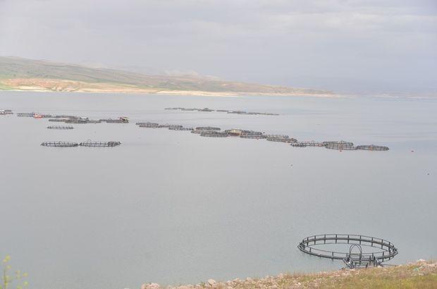 kayseri, balık ihracatı