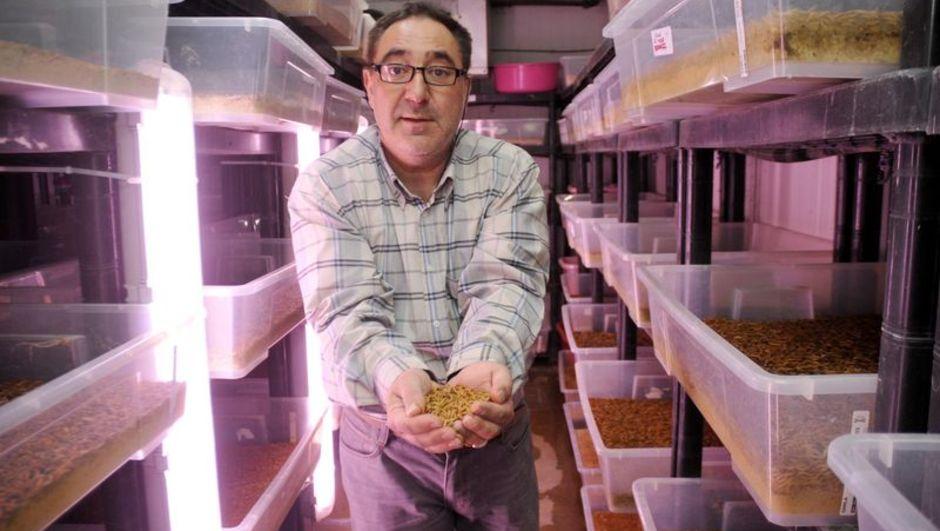 Böcek çiftliği sahibi Selami Gökgöl: Bir bakışta böceklerimin derdini anlarım