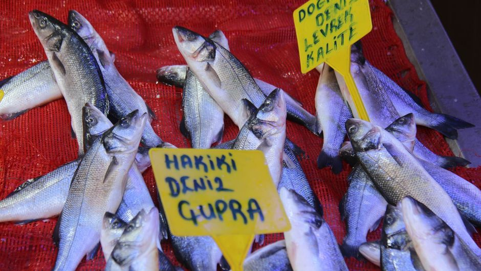 Balıkçıların da yüzü güldü!