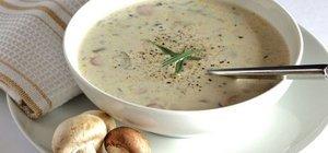 Evde mantar çorbası nasıl yapılır? Kokusu ile iştah kabartan sütlü mantar çorbası tarifi...