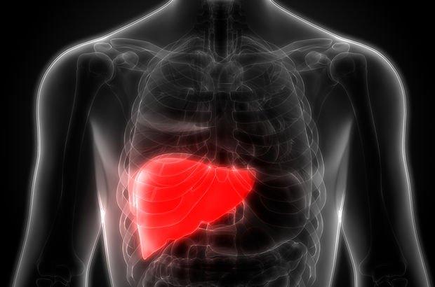 Türkiye'de 19 milyon yağlı karaciğer hastası var! Bu belirtilere çok dikkat!