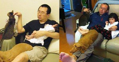 10 yıl boyunca aynı yerde aynı şekilde poz veren baba Wong, kızı, kedisi ve köpeği viral oldu!