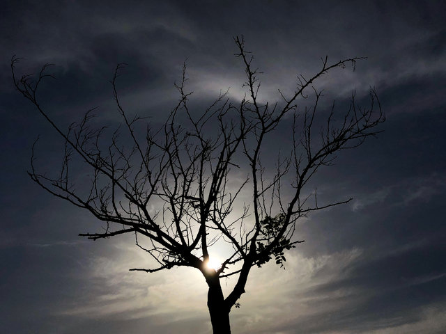 Gün batımında fotoğraf çekmeyi sevenlere profesyonel ipuçları!