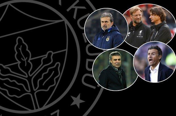 Fenerbahçe'nin teknik direktörü kim olmalı?