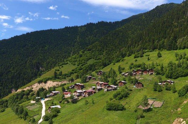 Çamlık köyü