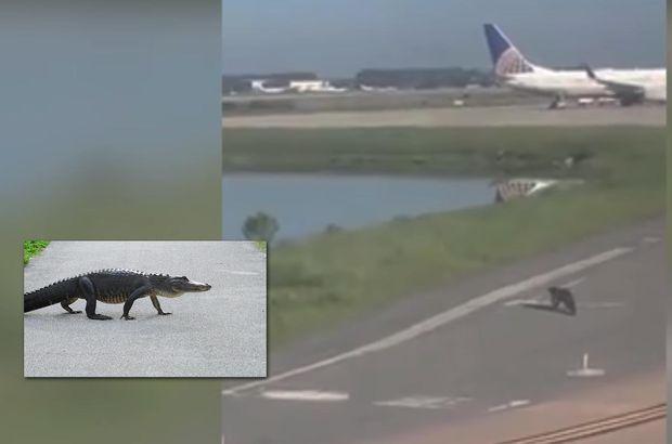 Orlando Uluslararası Havaalanı