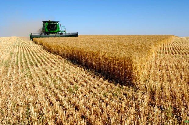 tarım üfe