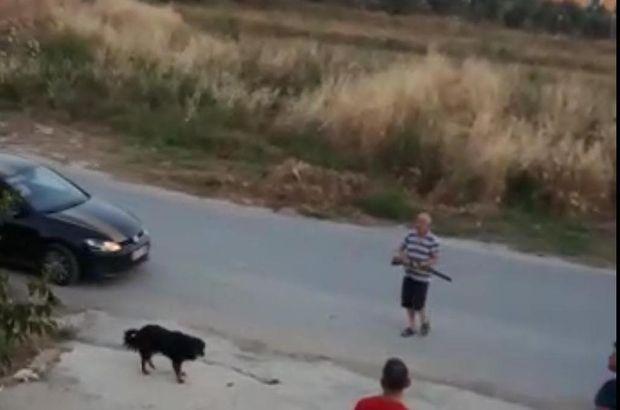 Sokak köpeklerine ateş eden kişiler tekrar gözaltında