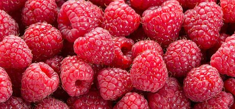 Gelmiş geçmiş en sağlıklı 50 besin!