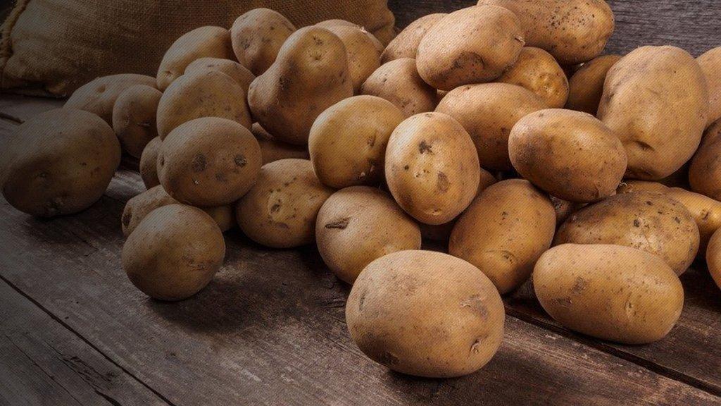 Patatesin tanesi 1, kilosu 6 TL