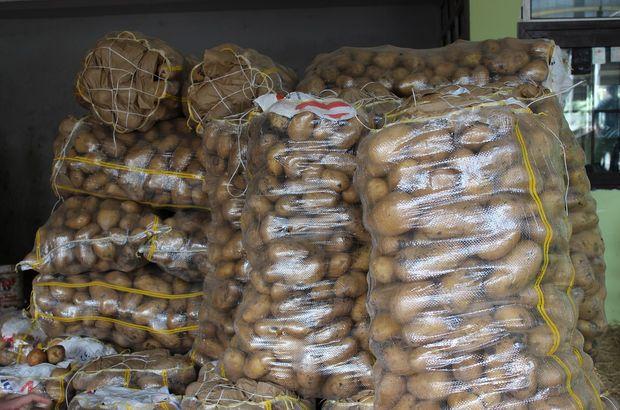 patates, patates fiyat