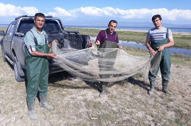 Van'da 500 kilogram kaçak avlanmış balık ele geçirildi