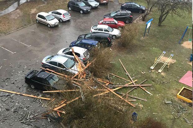 Rusya'da kasırga ağaçları köklerinden söktü