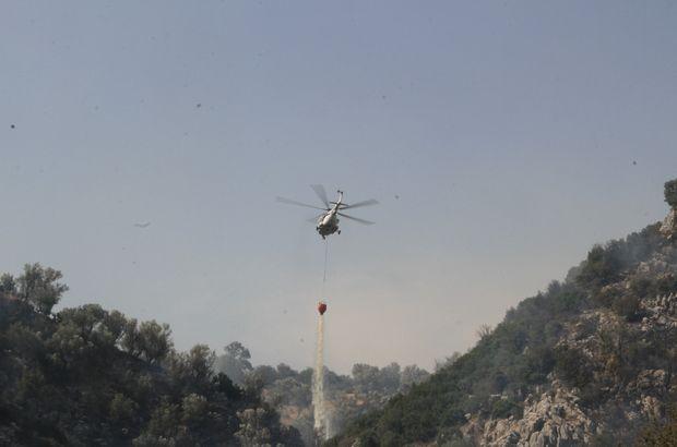 Muğla'da orman yangınında 40 hektar alan kül oldu