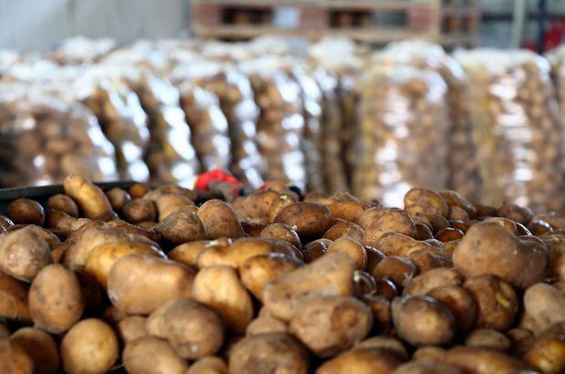 Fakıbaba'dan çok önemli patates açıklaması