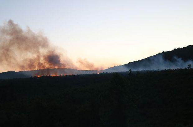 Son dakika! Aydos Ormanı'nda yangın