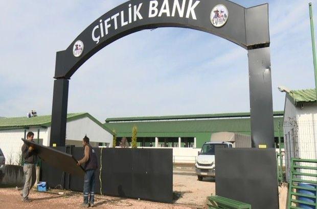 Çiftlik Bank mağdurlarının elleri kolları bağlandı