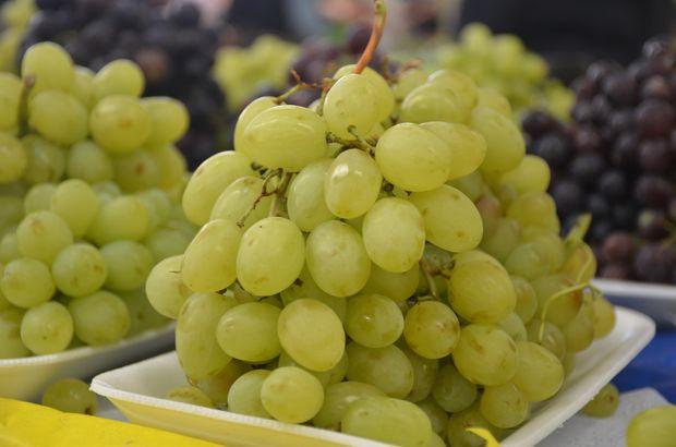 yaş üzüm ihracatı