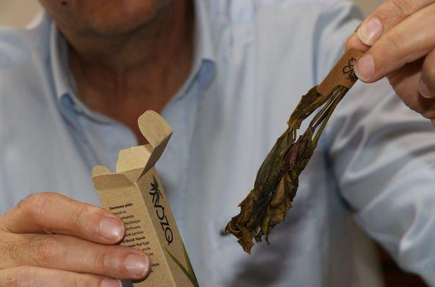 organik yeşil çay